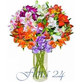 Купить цветы краматорск доставка цветов спб кустовые розы